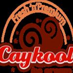 CayKool Ice Cream
